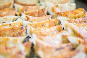 広島肉餃子
